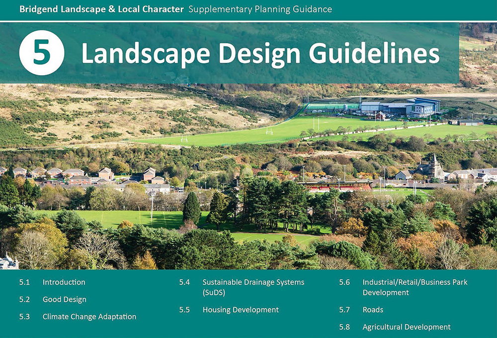 Landscape & Local Character Supplementary Planning Guidance (SPG ...
